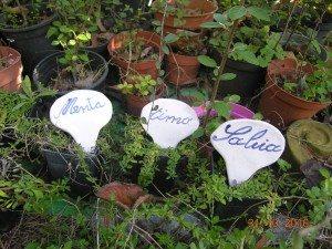 targhette speziali di ceramica per vasi